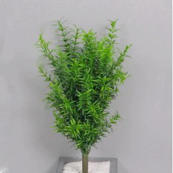 Rosmarin Buschbr Kunstblumen Pflanzen Tewa Shopde