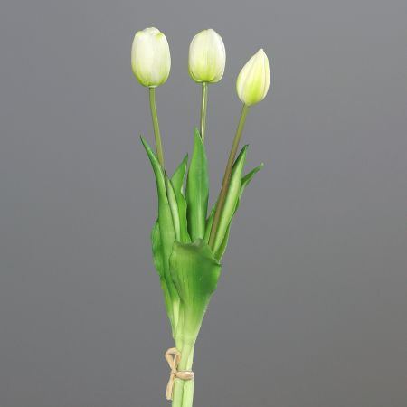 Tulpenstrauß x 3 cream real touch